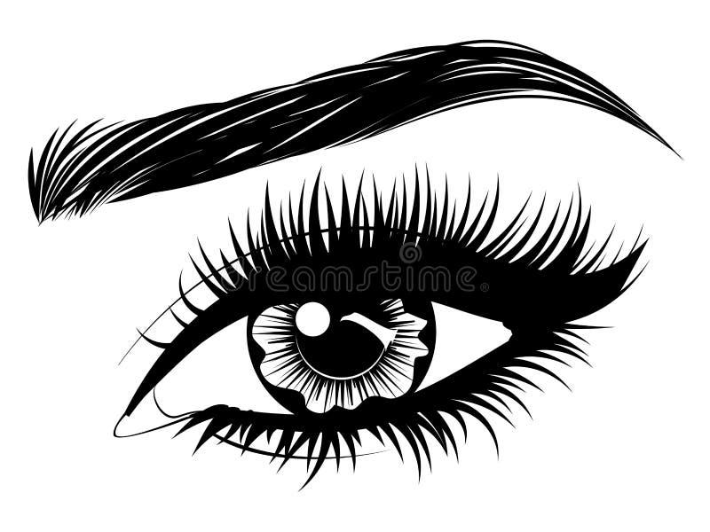 与长的睫毛和眉头的眼睛 向量例证