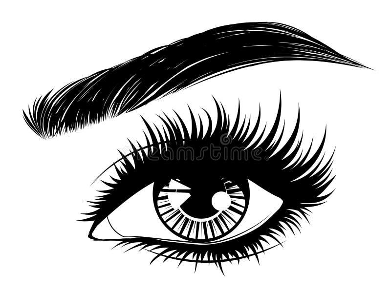 与长的睫毛和眉头的眼睛 库存例证