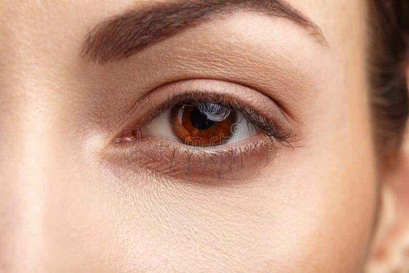 与长的睫毛的妇女棕色眼睛 免版税库存照片