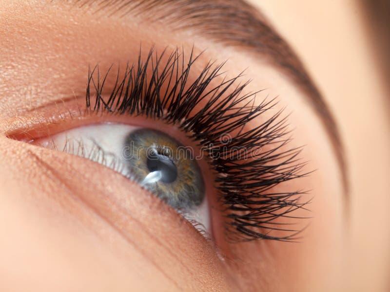 与长的睫毛的妇女眼睛。睫毛引伸 免版税库存图片