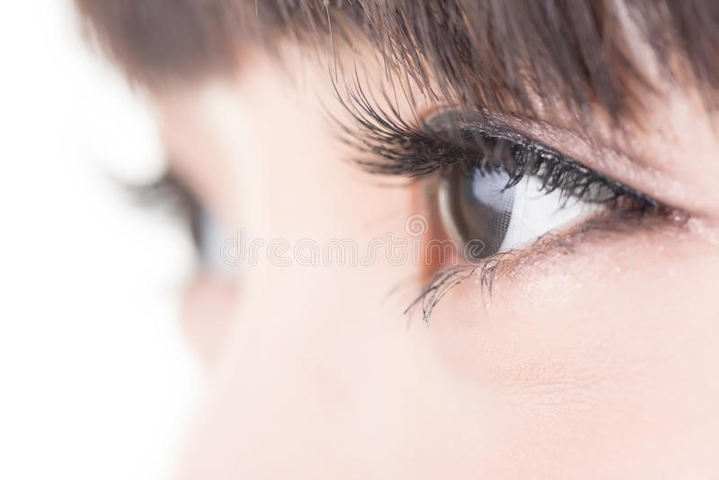 与长的睫毛的美丽的妇女眼睛 免版税图库摄影