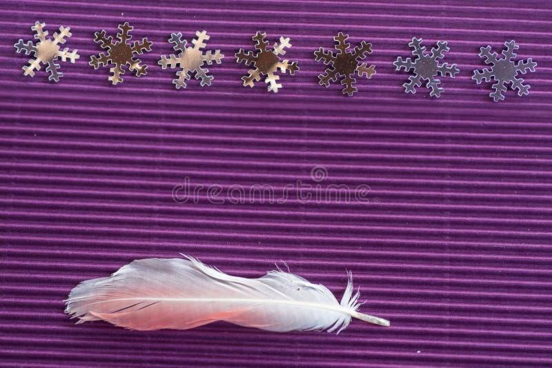 与闪耀的雪花和桃红色羽毛的圣诞节装饰安排 免版税图库摄影