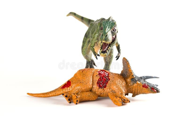 与附近三角恐龙身体的正面图暴龙在白色 免版税图库摄影