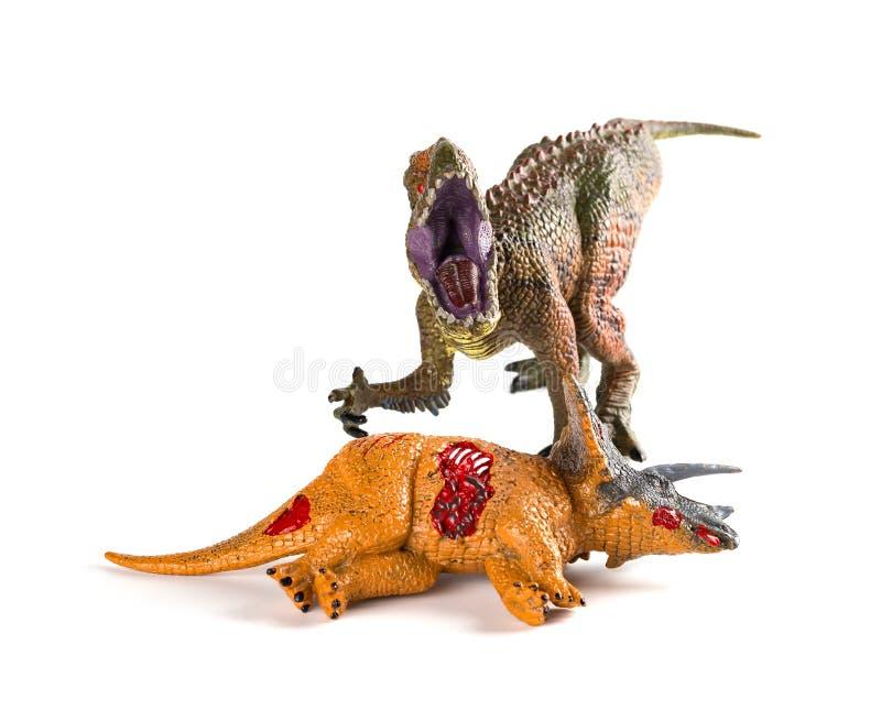 与附近三角恐龙身体的正面图鲨齿龙在白色 库存图片