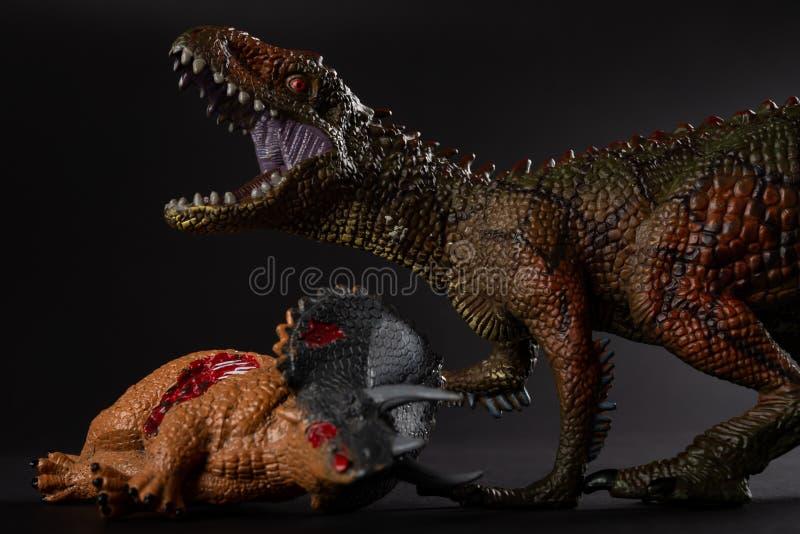 与附近三角恐龙身体的鲨齿龙在黑暗的背景 免版税图库摄影