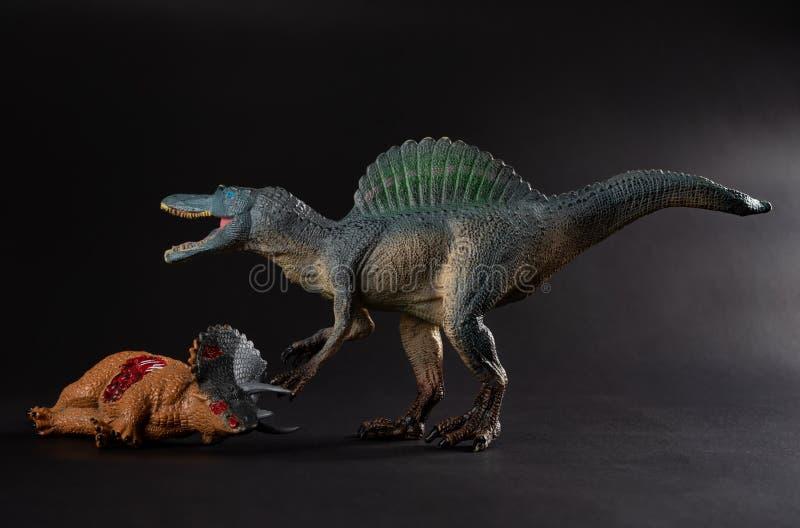 与附近三角恐龙身体的Spinosaurus在黑暗 免版税图库摄影