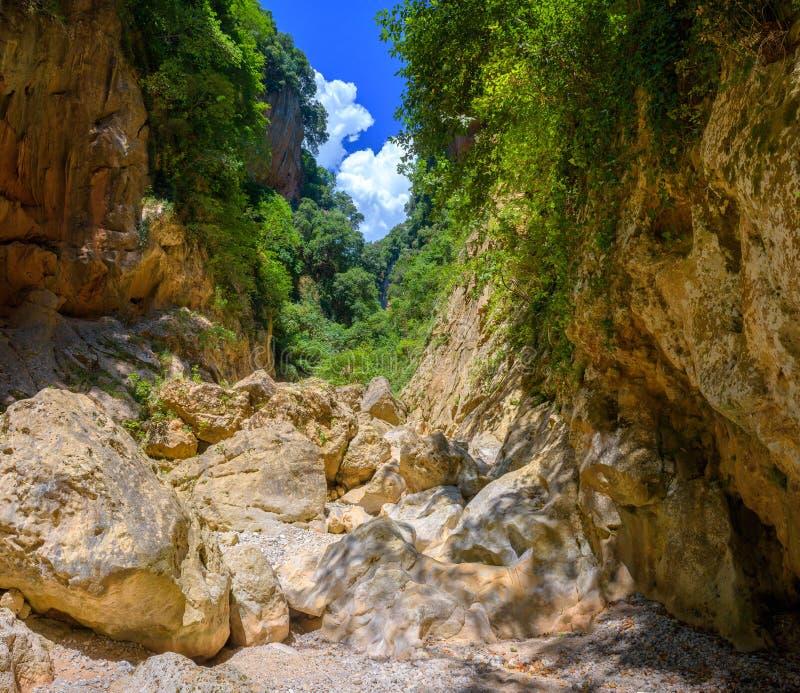 与陡坡的峡谷 图库摄影
