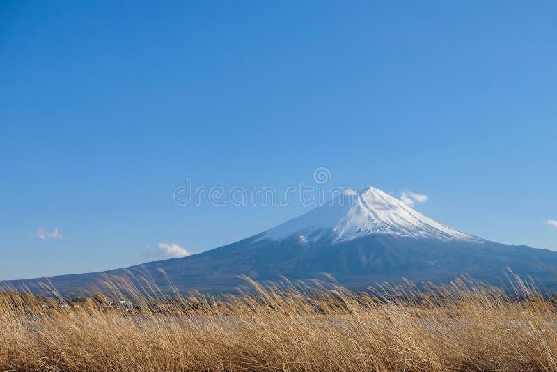 与雪加盖和天空蔚蓝的美丽的富士山在湖kawaguchiko,日本 库存照片