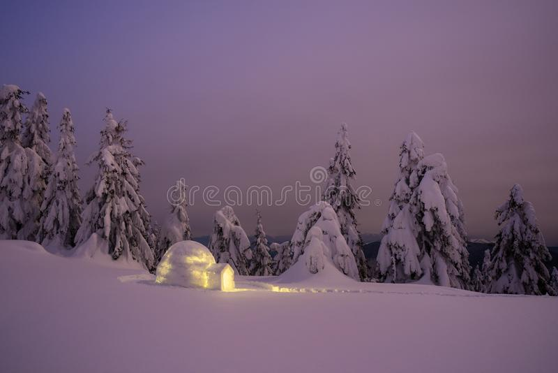 与雪园屋顶的小屋的美妙的冬天风景在晚上 免版税图库摄影