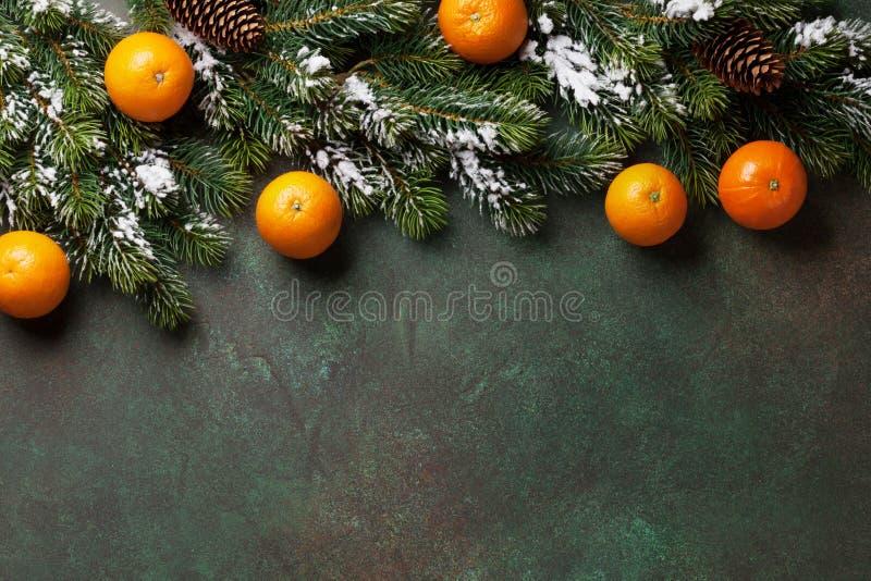 与雪杉树和蜜桔的圣诞节背景 图库摄影