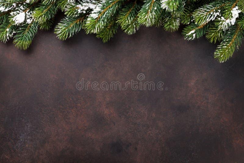 与雪杉树的圣诞节背景 库存图片