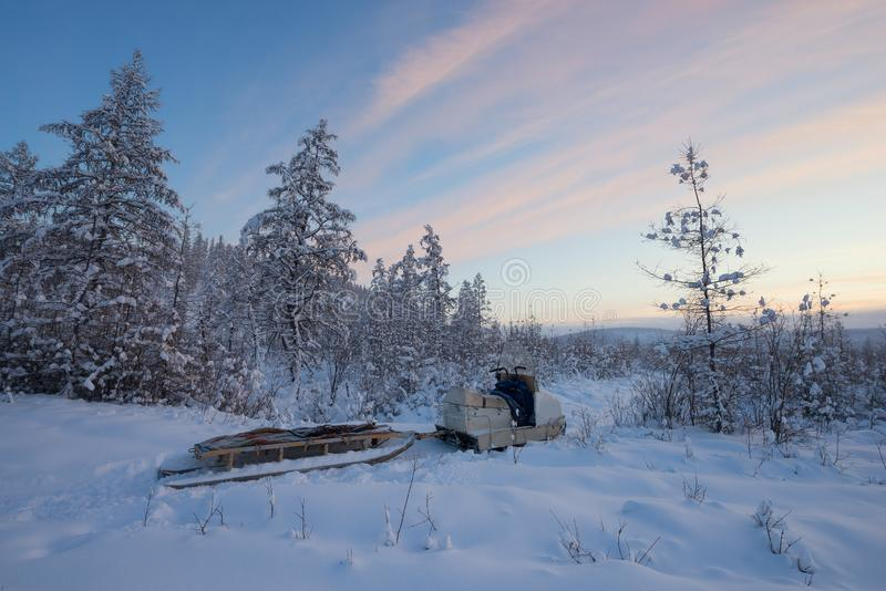 与雪橇的雪上电车在村庄奥伊米亚康-波兰人附近的森林里冷 免版税图库摄影
