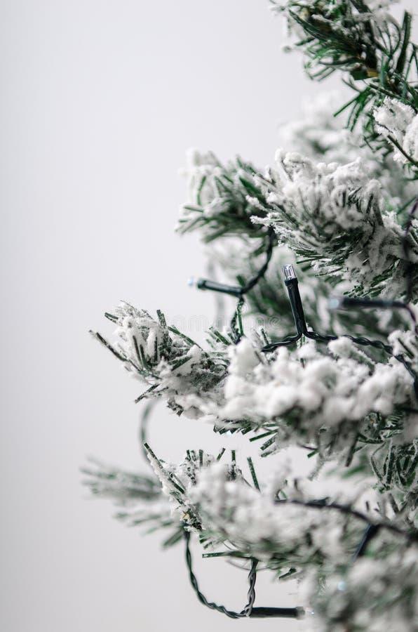 与雪的人为冷杉木在与一本电诗歌选的白色背景 被定调子的照片 库存图片