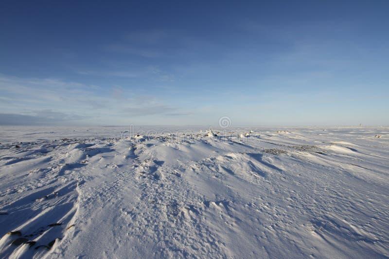 与雪的冬天北极风景在地面上 库存图片