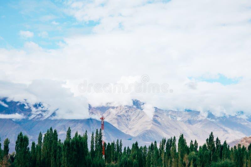 与雪的山在顶面和绿色树在底部与红色电源杆在Leh,拉达克,印度 图库摄影