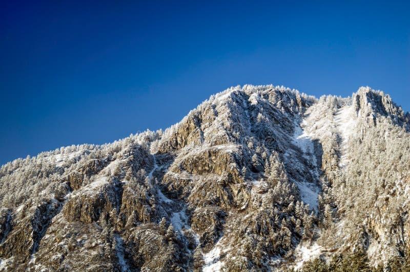 与雪的山 库存照片