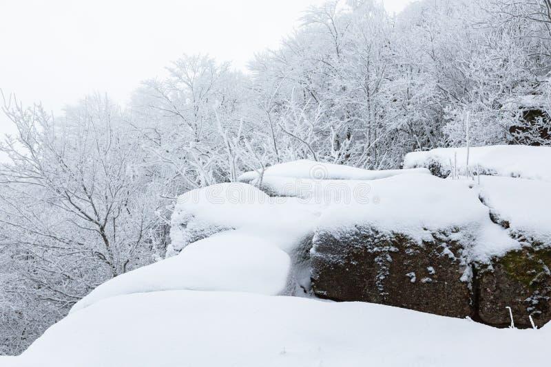与雪的岩石在冬天 库存图片