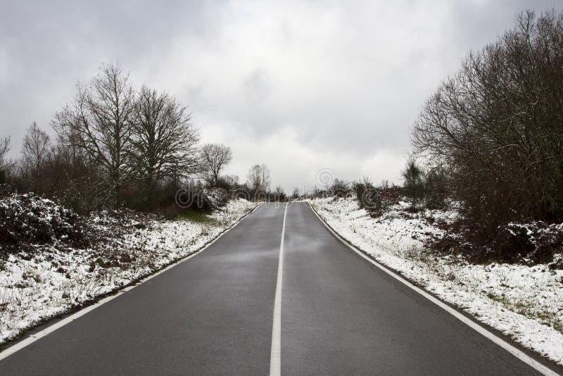 与雪的横向 图库摄影