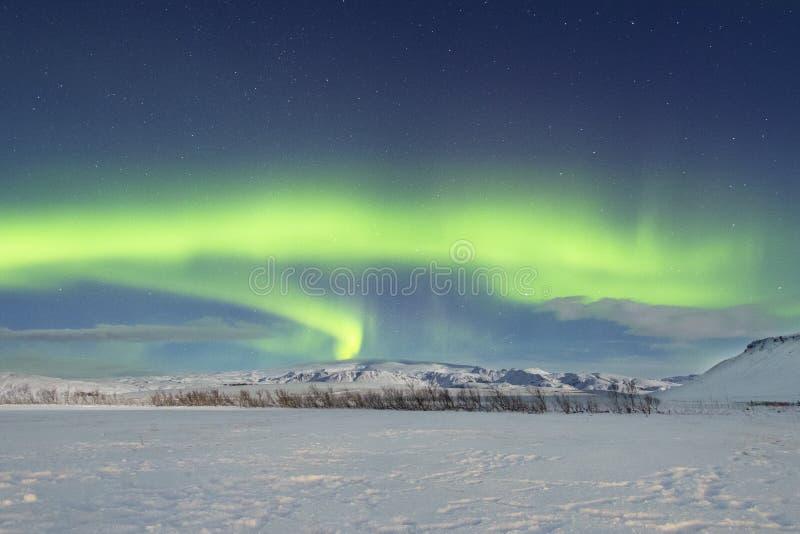 与雪风景的北极光 免版税库存图片