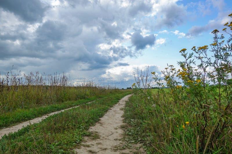 与雷云的剧烈的乡下风景在麦田的天空 在领域的乡下公路 免版税图库摄影