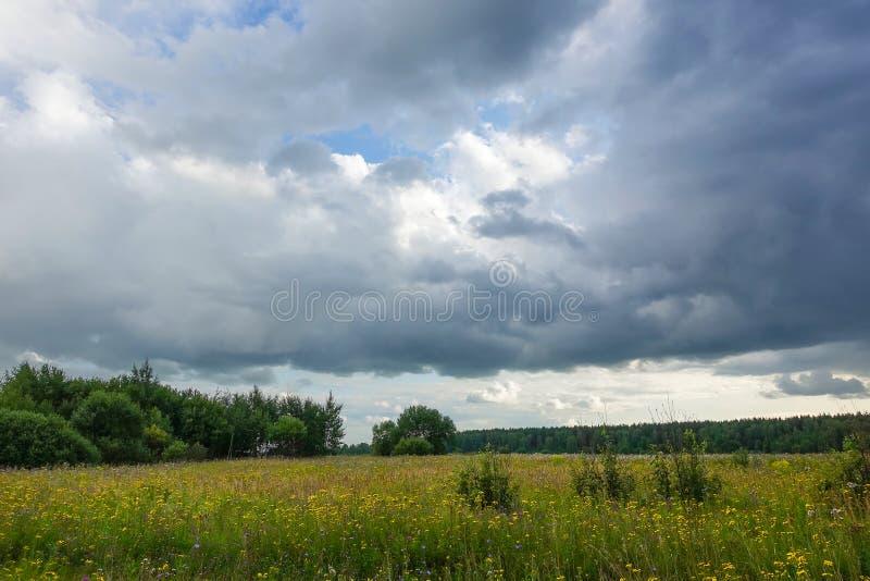 与雷云的风景在一个绿色领域 俄罗斯莫斯科地区 库存图片