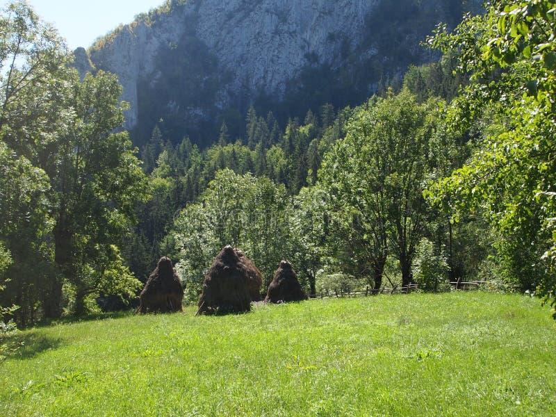 与雾和一个干草堆的惊人的山风景在罗马尼亚 免版税库存图片
