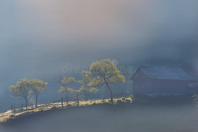 与雾和树的罗马尼亚山风景在春天 免版税库存照片
