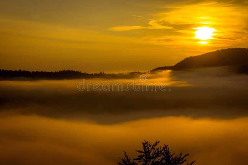 与雾的惊人的山风景在早晨 库存照片