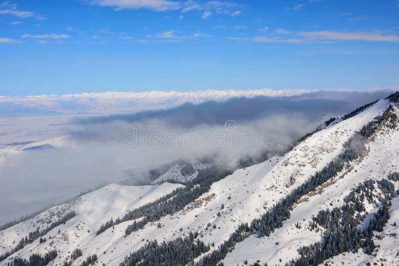 与雾的风景高山风景 在山、森林和天空蔚蓝下 免版税库存图片