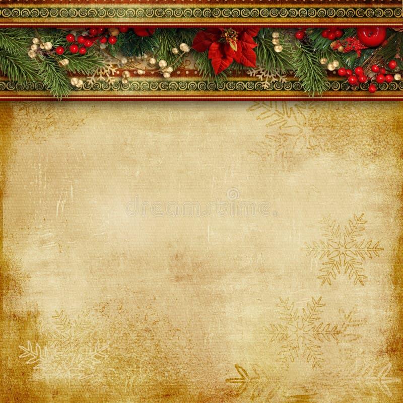 与霍莉、一品红和冷杉木的圣诞节雄伟背景 库存照片