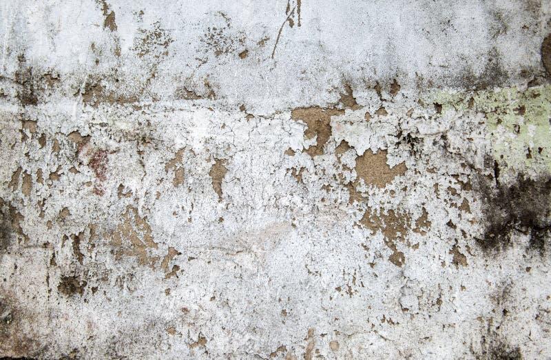 与青苔和破裂的膏药的墙壁纹理 免版税库存图片