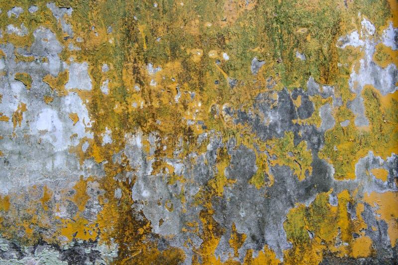 与青苔和破裂的膏药的墙壁纹理 库存照片