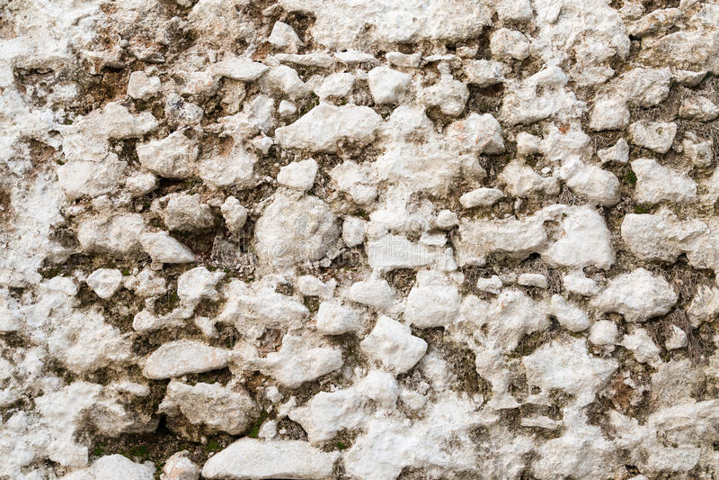 与青苔的白色老石墙纹理 库存照片