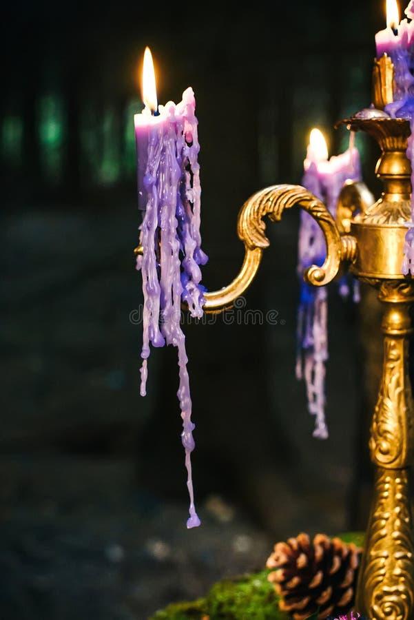 与青苔,蜡烛的浪漫桌滴下 图库摄影