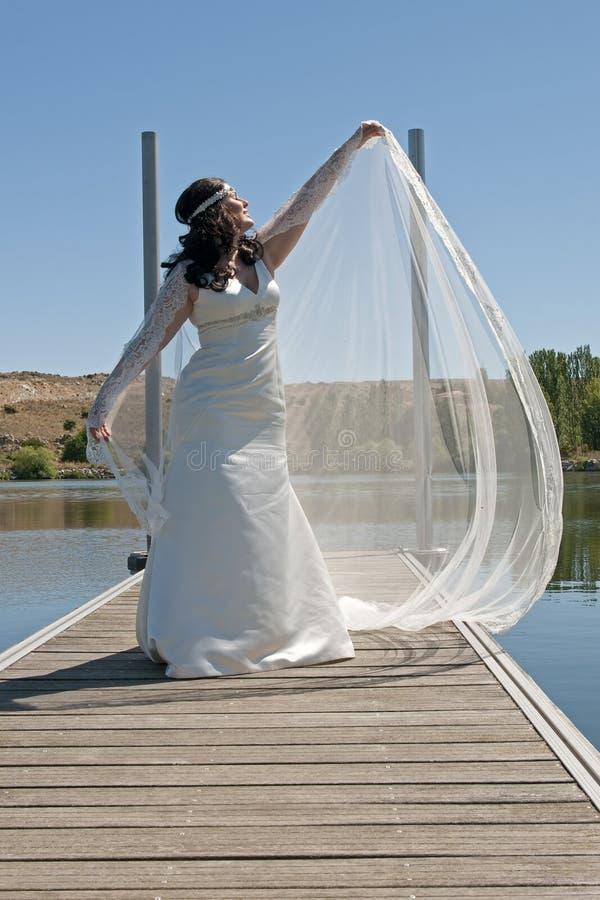 与面纱的新娘姿势 免版税库存照片