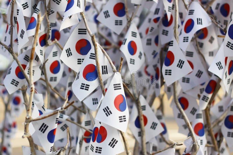 与韩国旗子的树 免版税库存图片