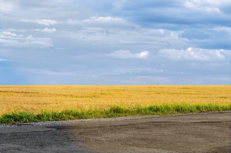 与领域和天空路的风景 免版税库存图片