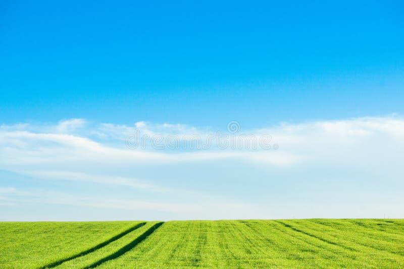 与领域轨道的乡下风景 免版税图库摄影
