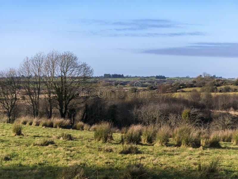 与领域,沼泽的典型的爱尔兰风景风景在Co的秋天 高尔韦爱尔兰 免版税库存图片