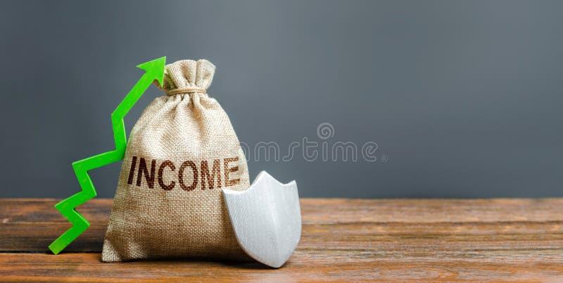 与题字收入的袋子,绿化箭头和金属盾 减少风险,事务的有利条件 ?? 图库摄影