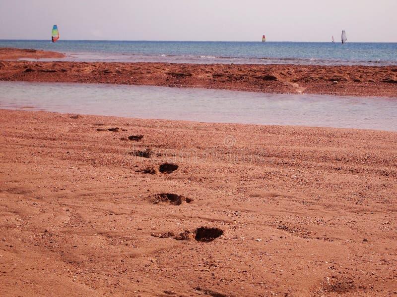 与风帆冲浪者天际的和含沙海岸的海景与在沙子的脚印在前景 库存图片