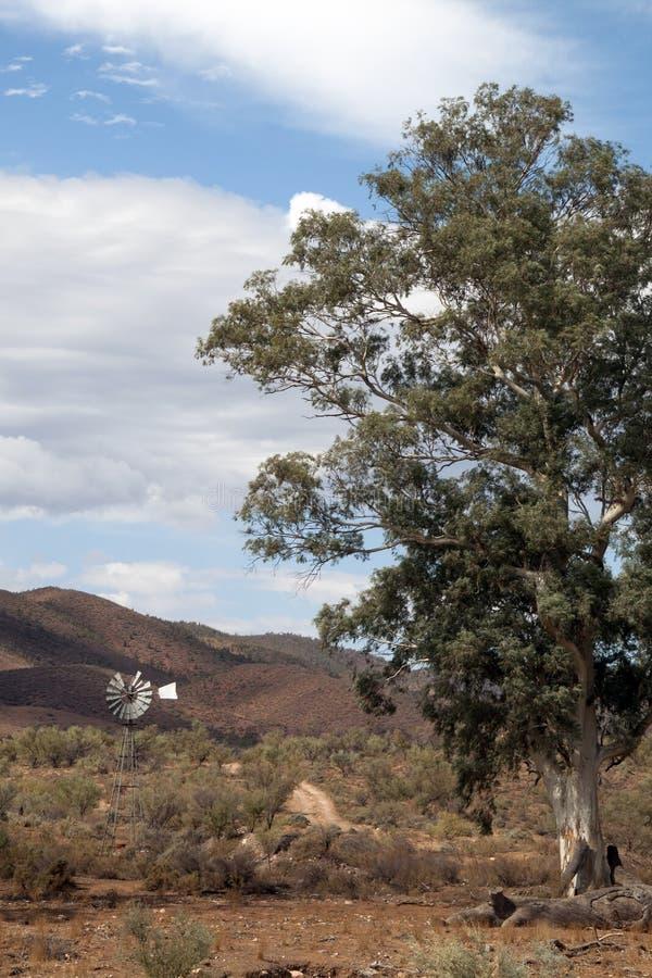 与风车的在内地风景 免版税图库摄影