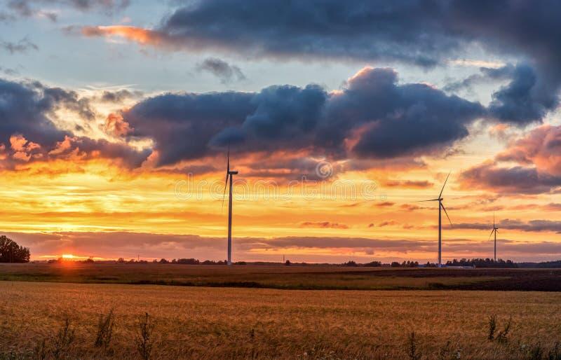 与风车的日落和麦田在背景中 免版税库存照片