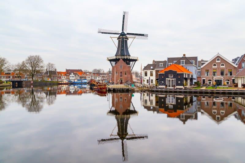 与风车的美丽如画的早晨风景,哈莱姆,荷兰 图库摄影