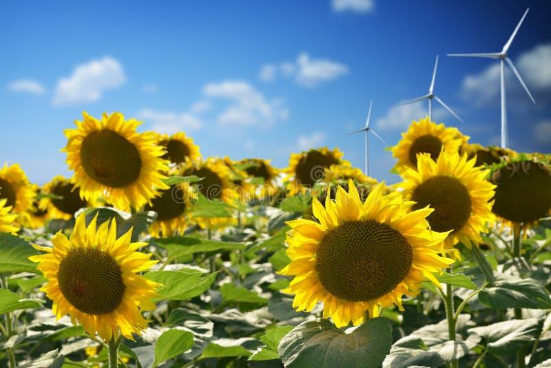 与风轮机的风力反对天空蔚蓝导致可再造能源 免版税库存图片