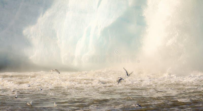 与飞行在水的搅动的海洋和绿灰色鸥的剧烈的冰川瀑布场面 库存图片