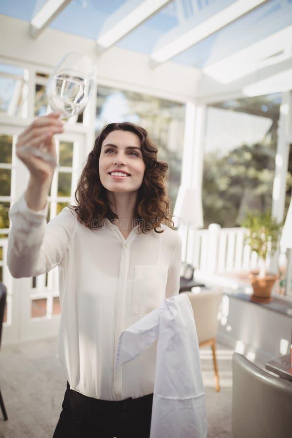 与餐巾的美丽的女服务员清洁酒杯 图库摄影