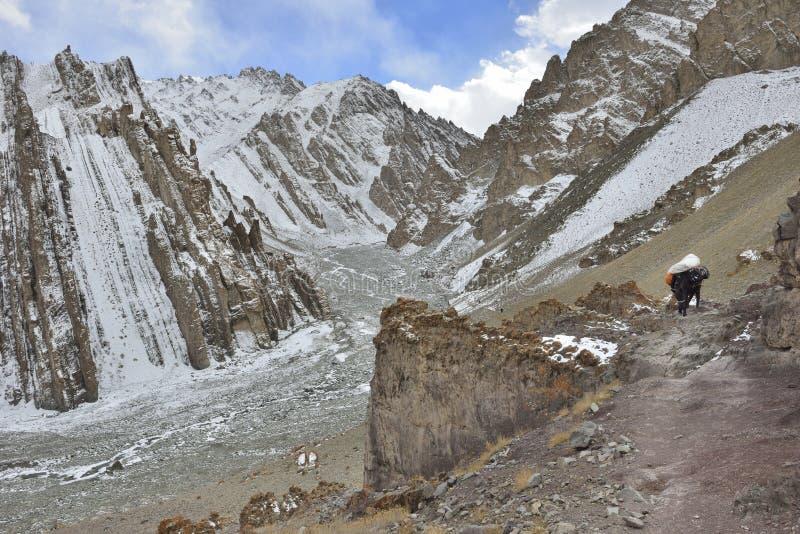 与马的山风景从Leh 免版税库存照片