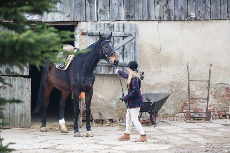 与马的车手 库存照片