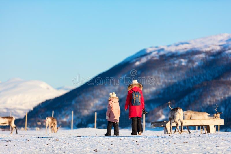 与驯鹿的家庭 免版税库存图片
